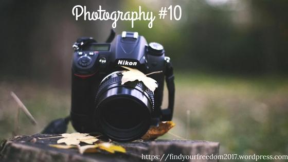 Photography #10