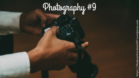 Photography #9