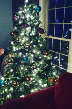 """My Christmas Tree"" Photo #3 (Edited #2)"