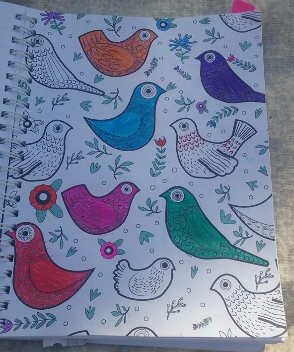 Drawing-of-Birds-by-Minah