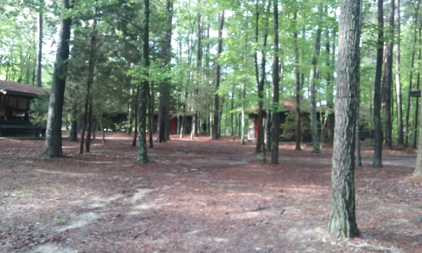 Photography - Girl Scout Campsite