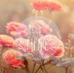 Hello-June-4