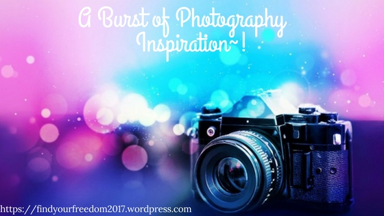 Minah-Harmon-Photography-Inspiration