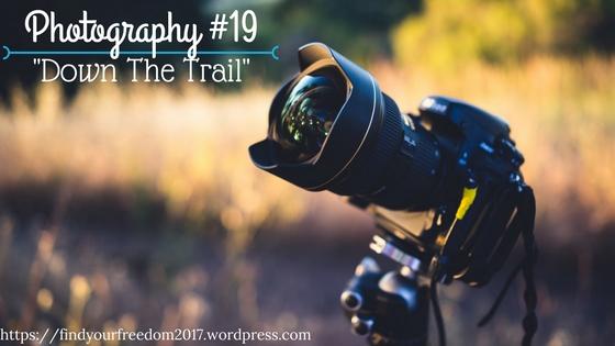 Photography-19