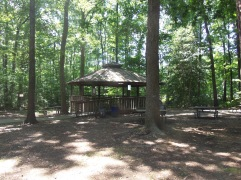 Forest-Gazebo-Photography