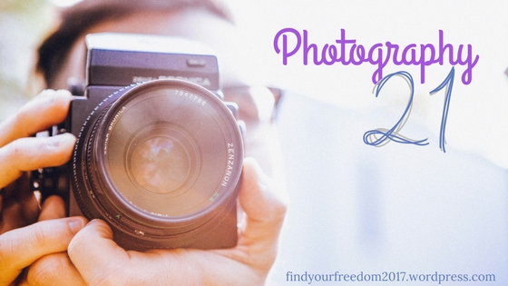 Photography-21-by-Minah-Harmon