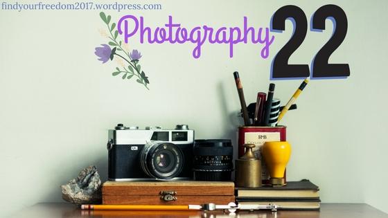 Photography-22-by-Minah-Harmon